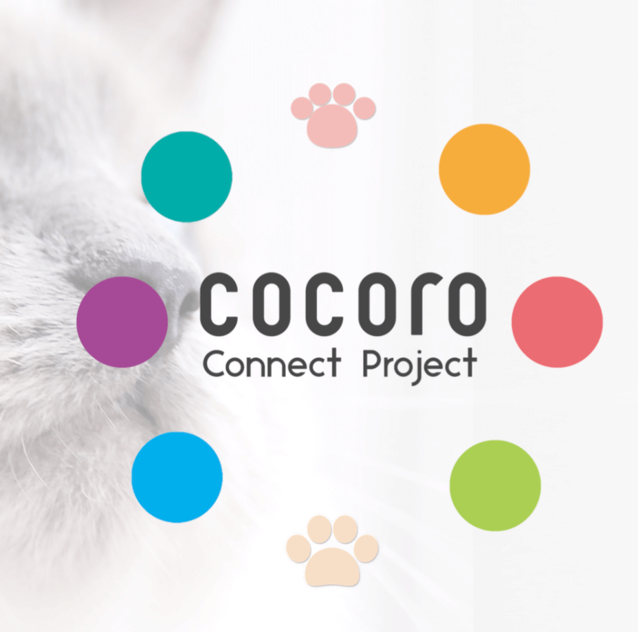 ocoro connect project