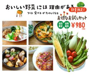 坂ノ途中 お試しセット 野菜