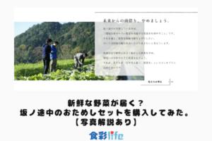 新鮮な野菜が届く?坂ノ途中のおためしセットを購入してみた。【写真解説あり】 アイキャッチ