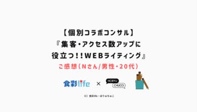 【個別コラボコンサル】 『集客・アクセス数アップに 役立つ!!WEBライティング』 ご感想(Nさん_男性・20代) アイキャッチ