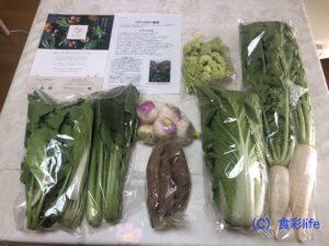 食べチョクで購入のお試し野菜セット
